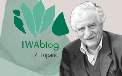 Welcome to the  IWA Blog