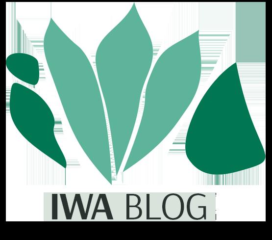 Welcome to IWA Blog